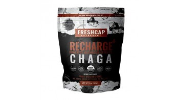 Recharge - Chaga Mushroom Extract Powder