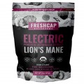 Electric - Lion's Mane Extract Powder